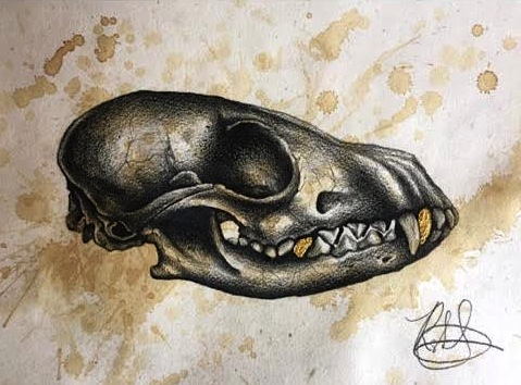 Revisited Fox Skull with Oils